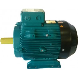 Crompton Greaves Electric Motor Aluminium 2 pole 1.5Kw