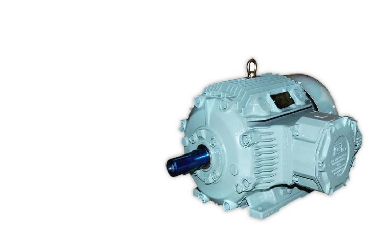 CG Flameproof EEX d Electric Motors