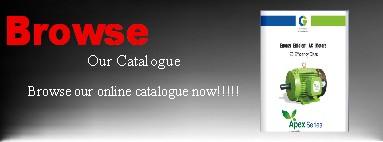 CG Electric Motors-Catalogue